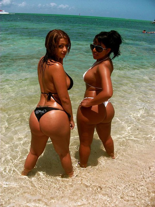 Bikini hot chicks revealing their nice booties